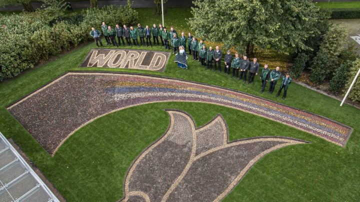 'A World of Colors' for floral mosaic in Keukenhof