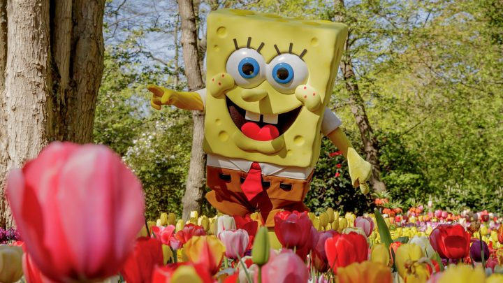 SpongeBob in Keukenhof