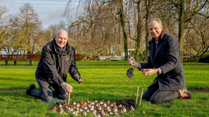 Astronaut André Kuipers plants the last flower bulbs for Keukenhof 2021