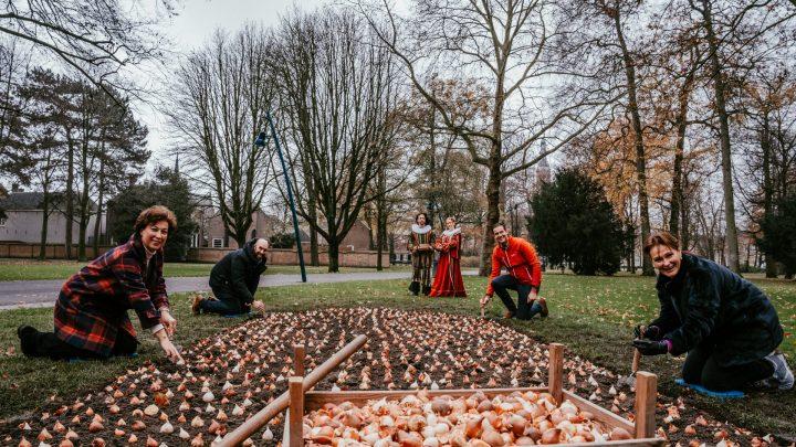 Keukenhof plant bijna 4.000 tulpenbollen in Valkenberg Park Breda