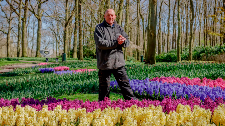 Gardener Owen shows you the hyacinths