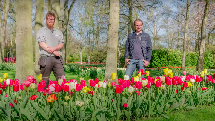 Designer Frans explains how he designs Keukenhof