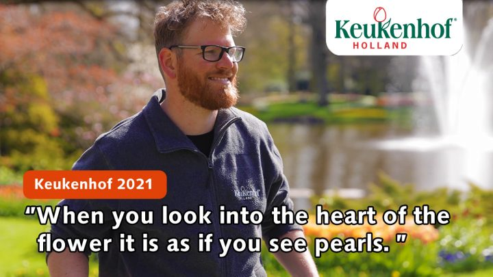 """Designer Frans: """"Look into the heart of the flower, it is as if you see pearls."""""""