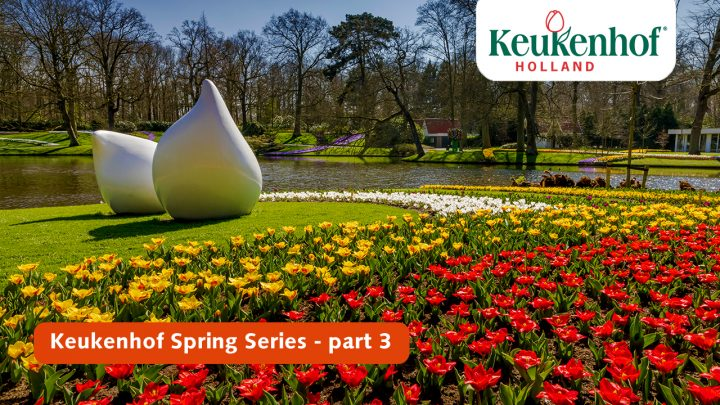 Keukenhof Spring Series - April 6