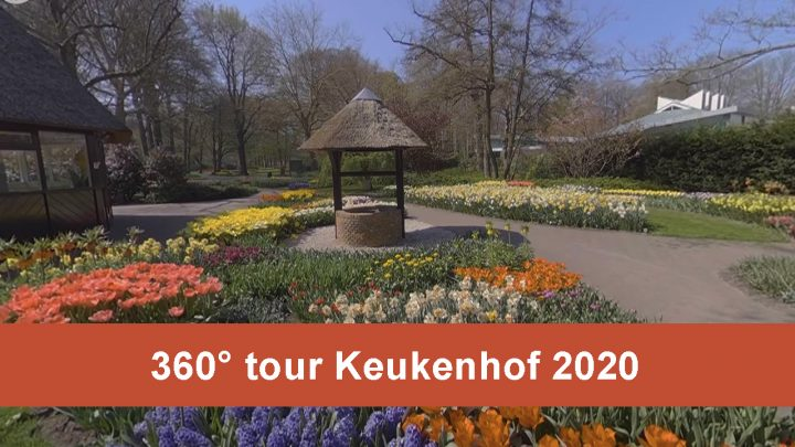 360° tour through Keukenhof!